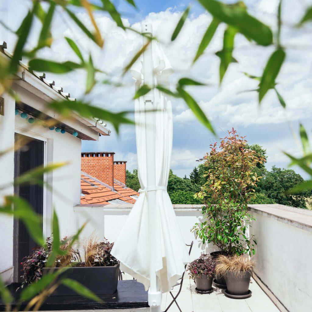 Terase i balkoni - Dnevna Doza Biljaka